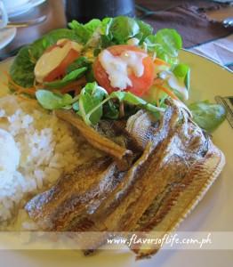 Breakfast of Fresh Baguio Green Salad, Daing na Espada and Garlic Rice