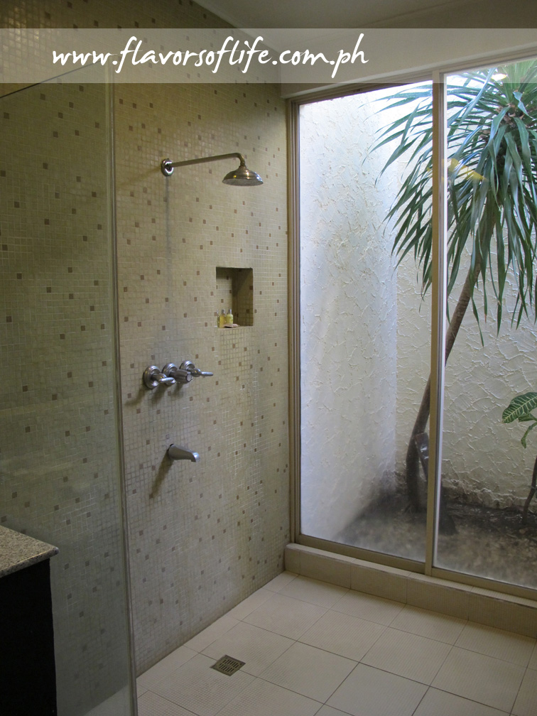 The shower area with a view