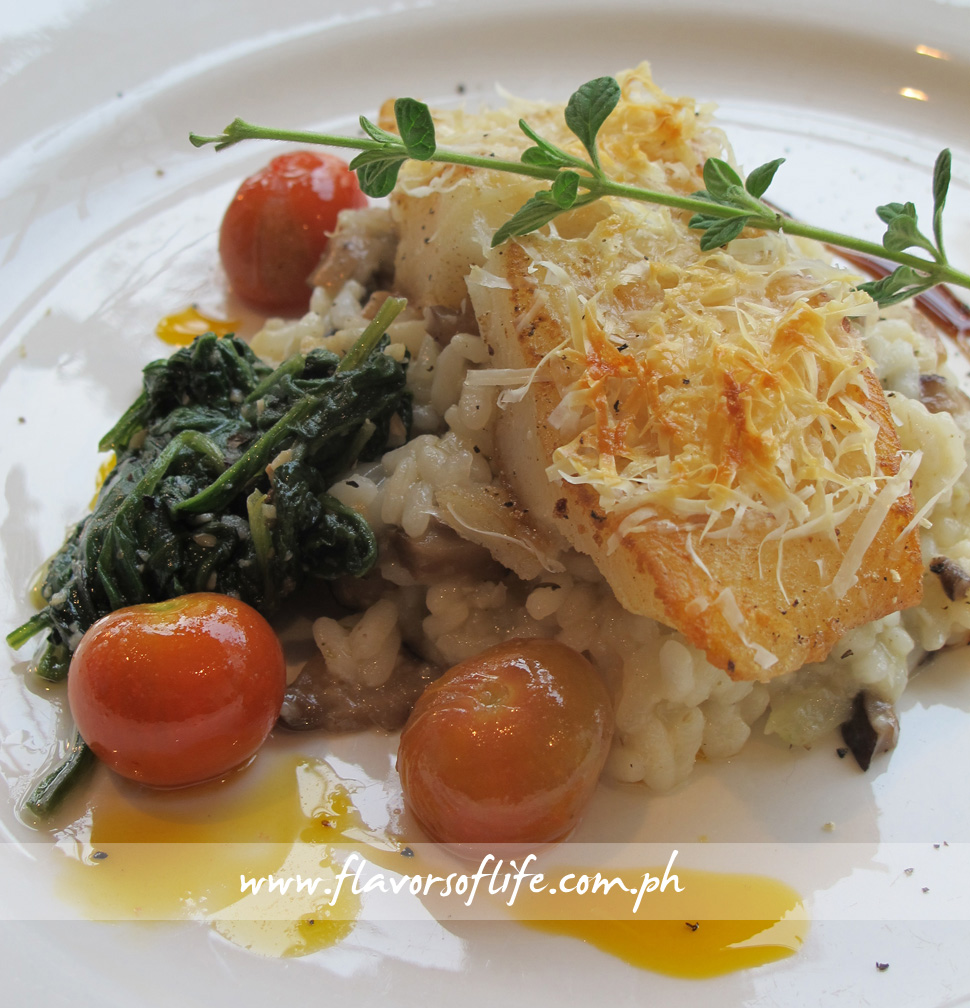 Parmesan Crusted Halibut (Balboa)