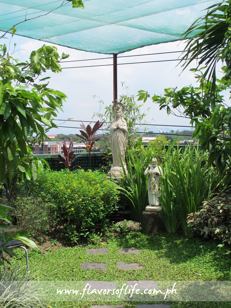 A pocket garden within the Green Roof at the rooftop of Cravings-Katipunan