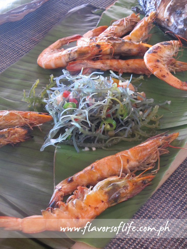 Shrimps and fresh seaweed