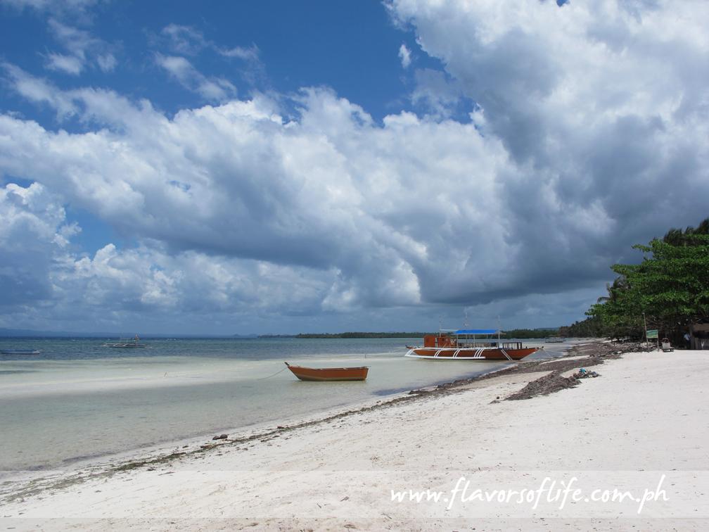 The other side of The Bellevue Resort Bohol's shoreline