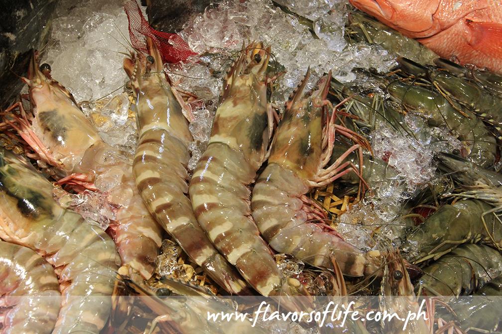 Giant prawns!