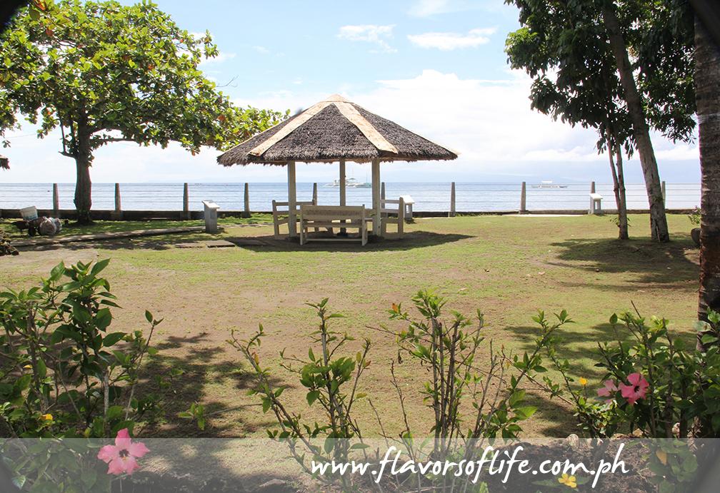 The resort overlooks the Dumaguete City Bay