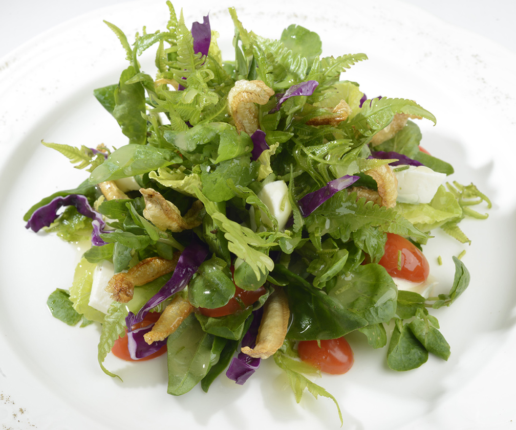 Mesclun and Micro Green Salad with Mango Chevre in Vinaigrette Dressing (Chef Jessie Rockwell Club)