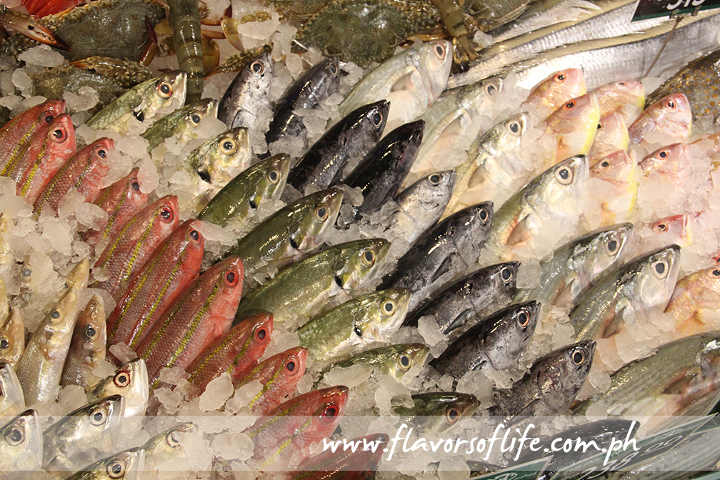Fresh fish selections