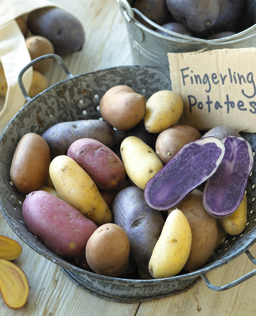 US fingerling potatoes