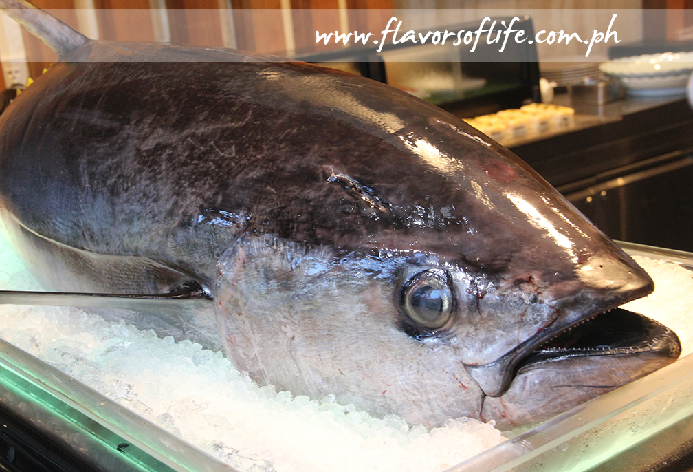 Huge fresh tuna for sashimi